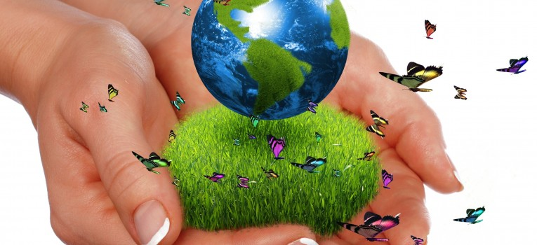 Educação Ambiental, uma lição para a vida