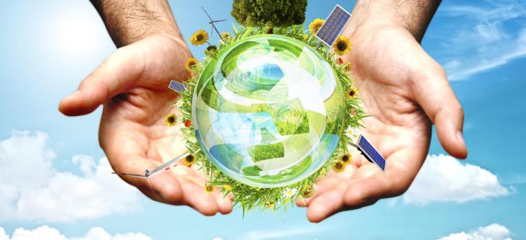 Sustentabilidade na Empresa