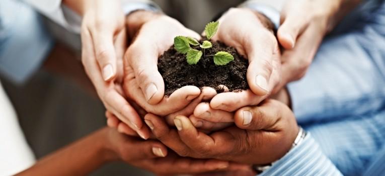 Se interessa em ajudar o Meio Ambiente? Você pode ser um Ambientalista