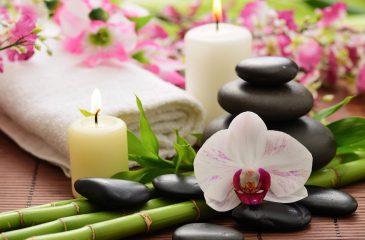 5 Dicas Incríveis Para Aplicar o Feng Shui Em Casa!