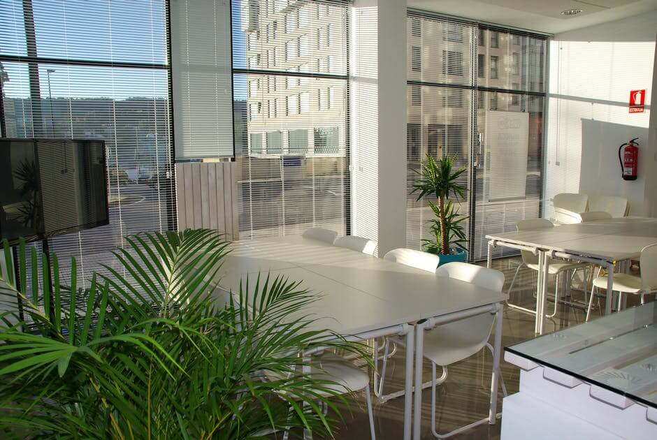 escritório com ambiente branco janelas grandes e plantas