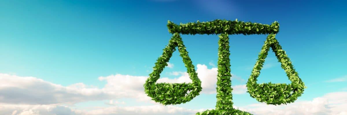 As principais leis ambientais brasileiras e seu papel na proteção do meio ambiente